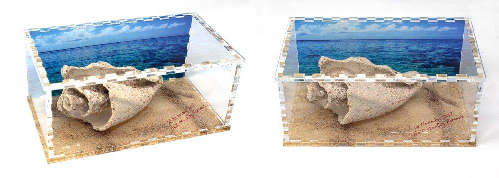 Custom Acrylic Display Box with Color Printing